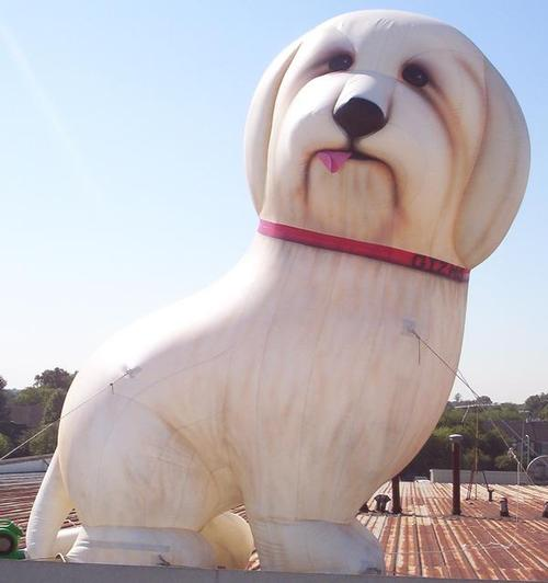 Gizmo Dog Balloon